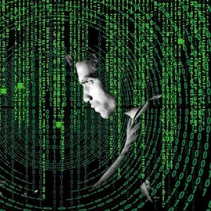 17 Ciberdelitos en tiempos de pandemia