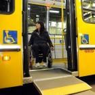 Los OTROS amparos por discapacidad