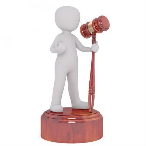 Destrezas en litigación oral - Útil para todos los fueros